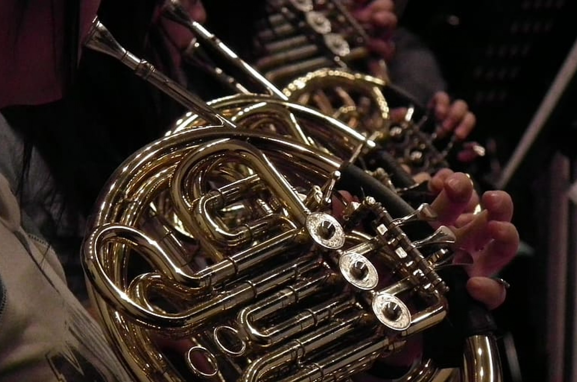 Brass - french horn reflections