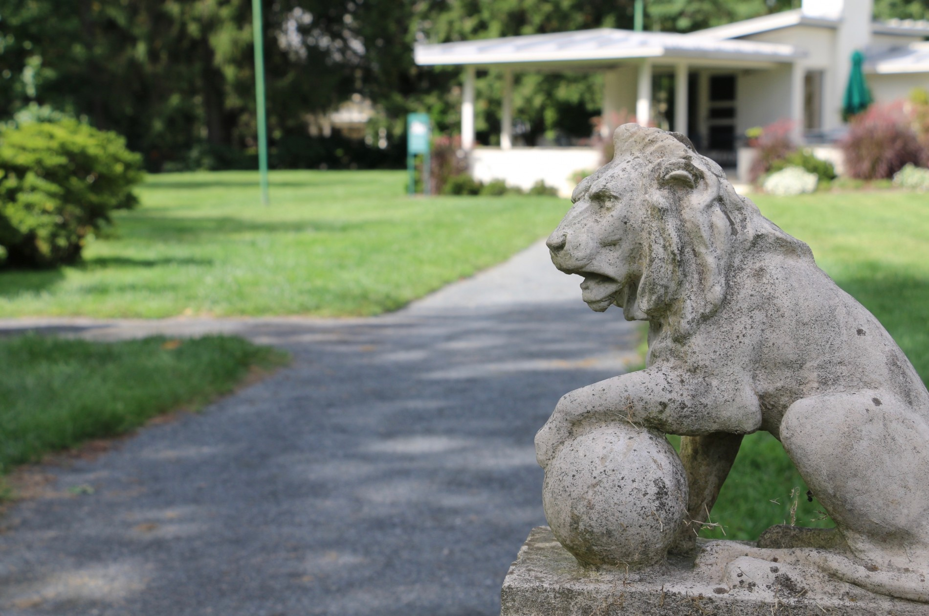 Ornamental lion guarding the pool house entrance at Morven Museum & Garden